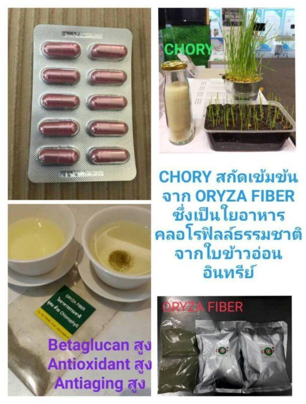 chory+ ใบข้าวอ่อนอินทรีย์